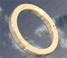 Ring Type Joints Gasket (RTJ Gasket)