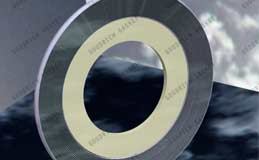Spiral Wound Gaskets | Quick Delivery, Competitive Price